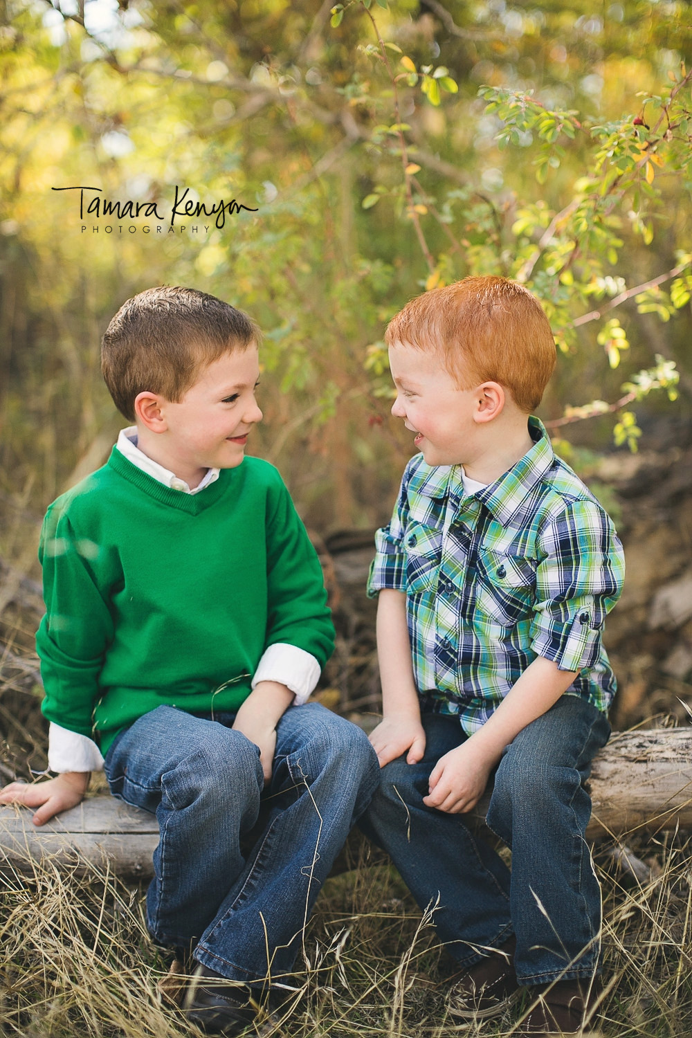 family photographer in boise idaho