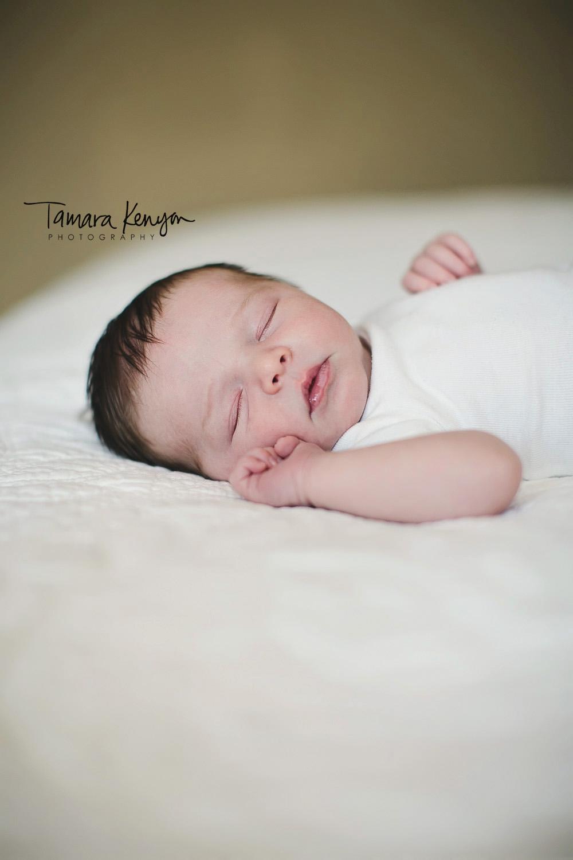 Newborn photography in boise