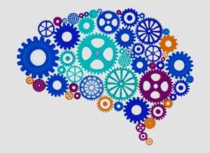 La evaluación neuropsicológica nos permite identificar alteraciones cognitivas causadas por algún tipo de accidente, situación o enfermedad en el que se compromete al Sistema Nervioso Central (Traumatismo Cráneo Encefálico, Accidente Cerebral Vascular, Isquemias, Embolia, Tumores, Alzheimer, Parkinson, Demencias, Abuso de Sustancias,entre otros) por medio de análisis cuantitativos y cualitativos del comportamiento y desempeño cognitivo.