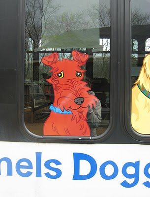 red dog bark bus