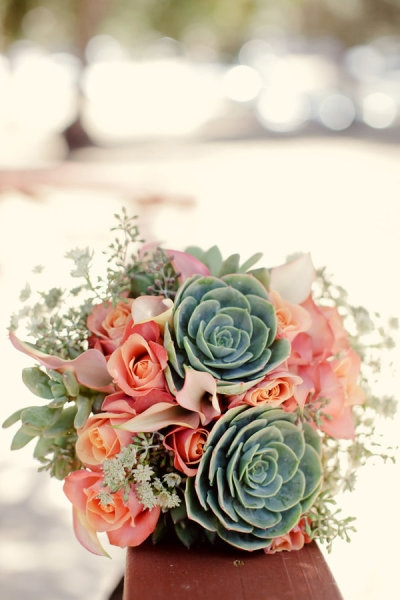 from pinterest with succulents