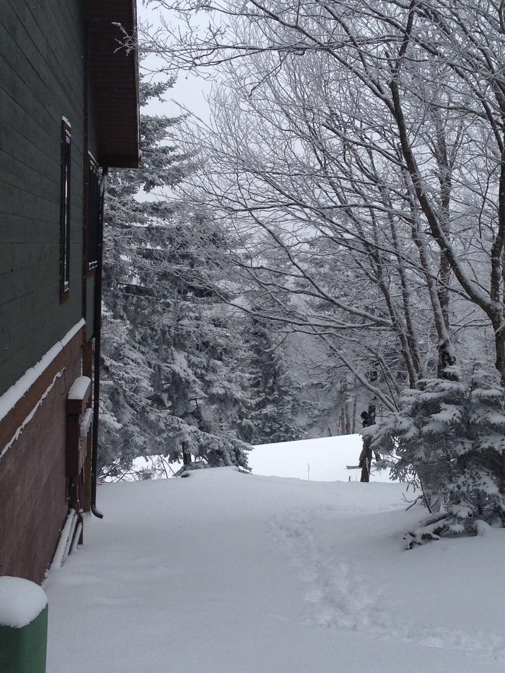 snow at snowshoe house.JPG