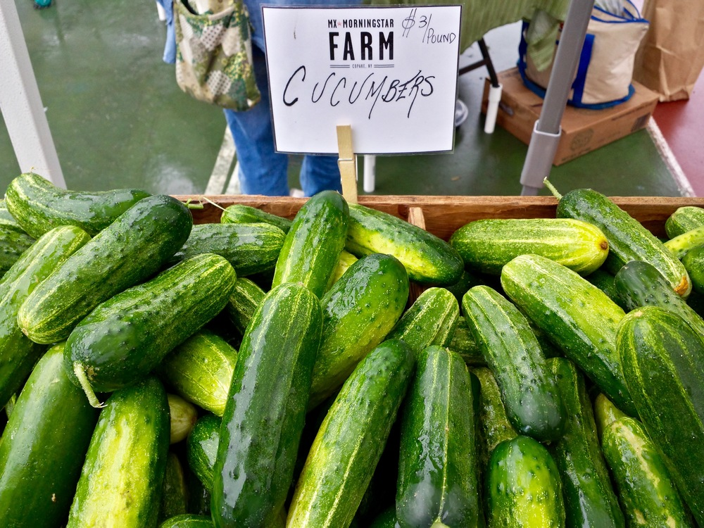 Cucumbers at Irvington Farmers Market