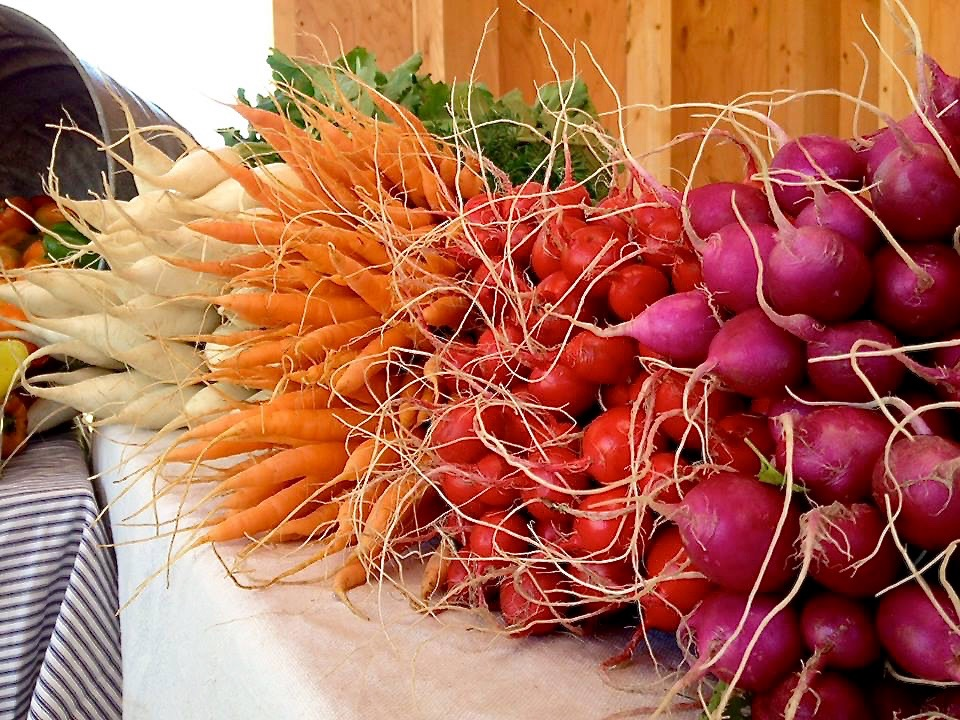 Radishes and Carrots at the Farm Stand