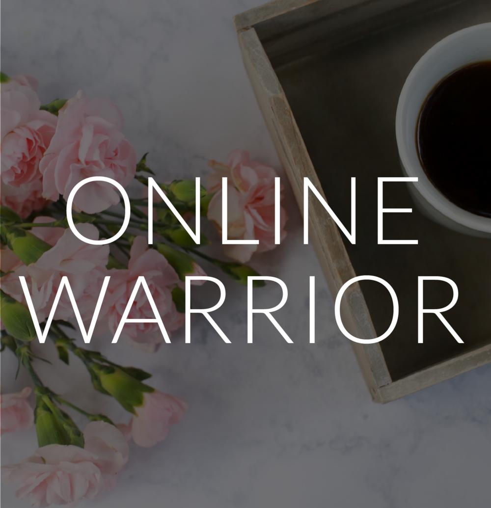 OnlineWarrior-01.png