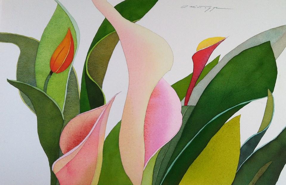 Callas and Tulips