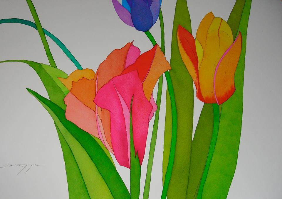 Three Tulips on White