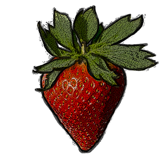 oskar strawberry | event motion pictures