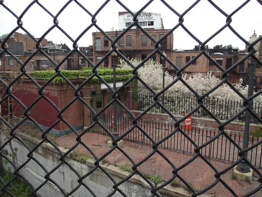 Caged Garden.JPG