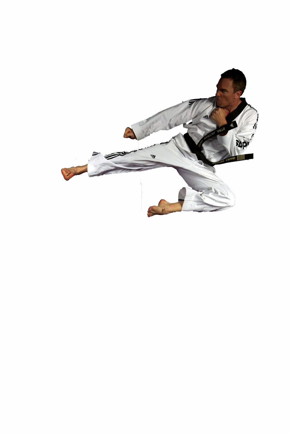 Martial arts kick