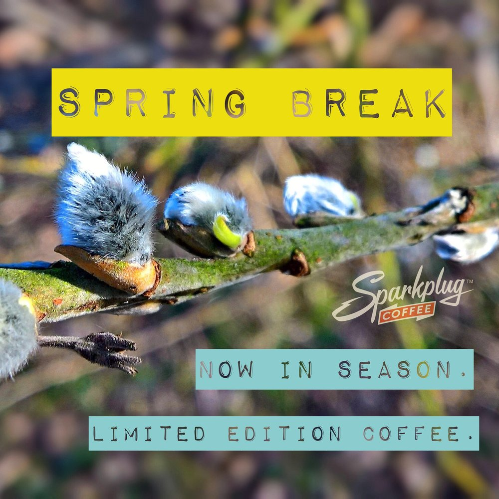 Spring Break coffee in season medium roast Guatemala Nicaragua.JPG