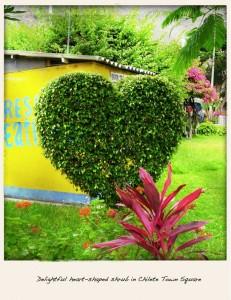 heart-231x300.jpg