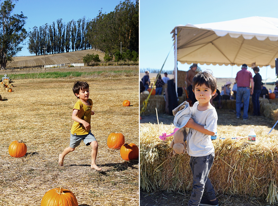HappyWeekend_10-17-15_PumpkinPatch_1.jpg