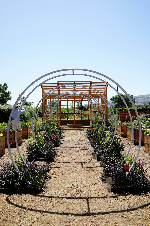 The New Sunset Magazine Test Garden And Kitchen At Cornerstone /  Www.goodonpaperdesign.com