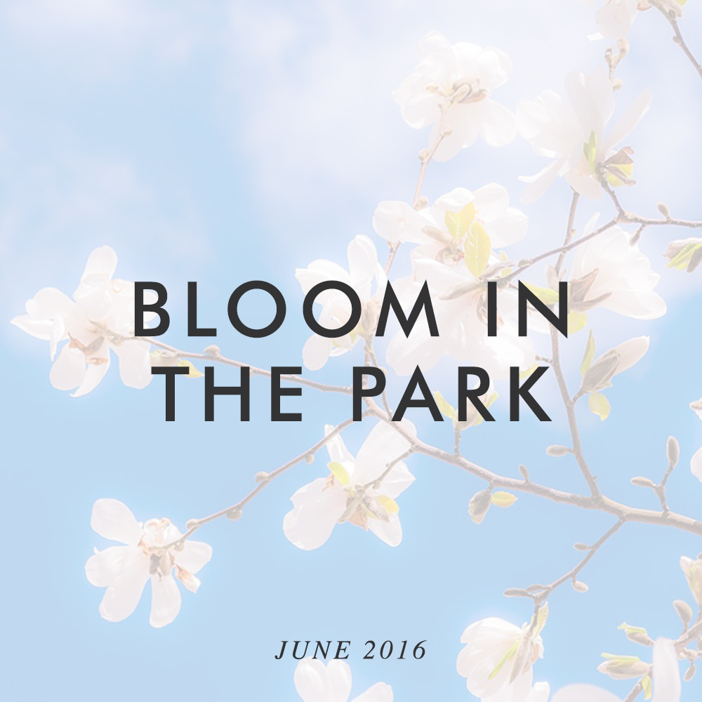 Come visit us at Bloom 2016. We'll be at Stand 17 in the DCCOI Craft Village. June 2nd to June 6th.