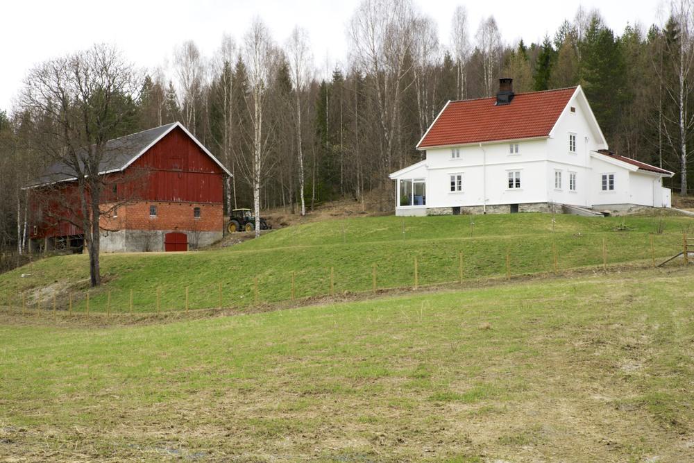 Bjørnerud - vår