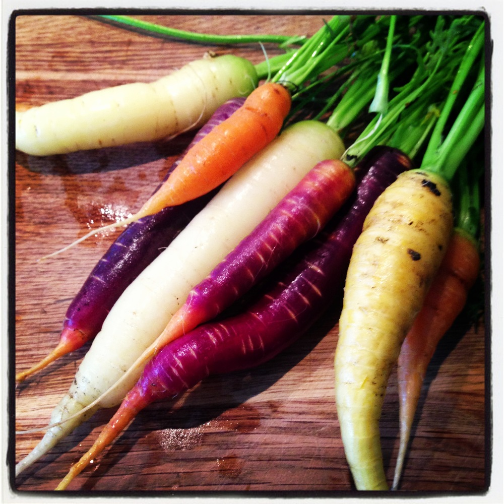 Herlig assorterte gulrøtter