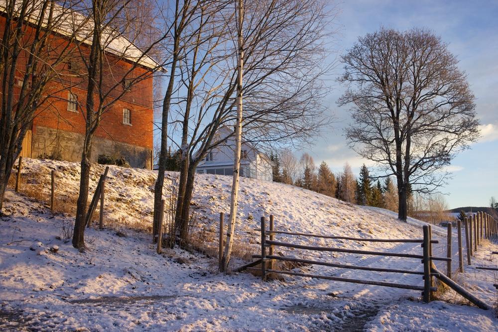 Vinterlåve