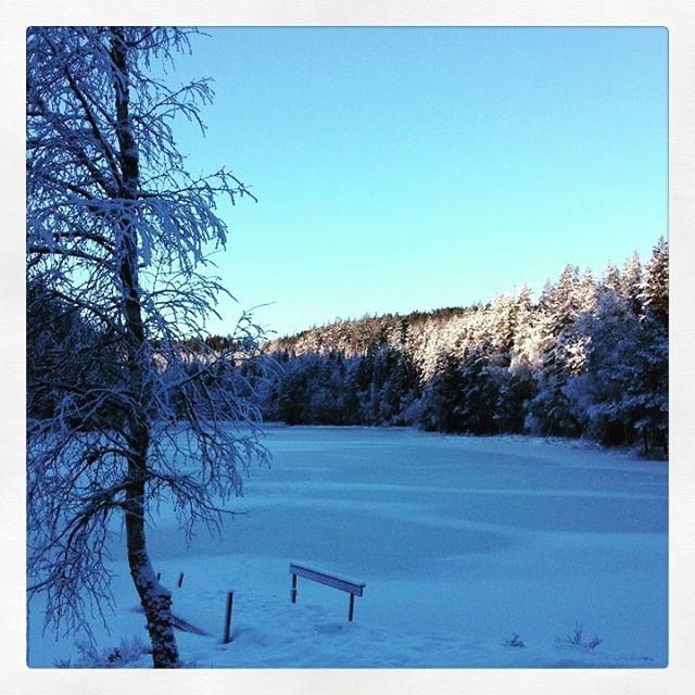Nydelig tur opp til Damtjern idag. #bjørnerud #vinter