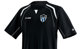 8. There are three colours in Kalev crest, why using only one a year? Especially when the black and blue combination would fit quite (jkkalev.ee)