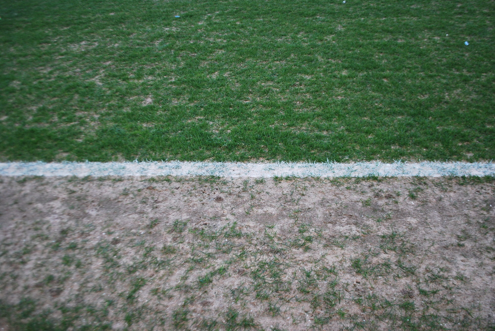 This is how the A.LeCoq Arena pitch looks like in one of the touchline, more sand than grass