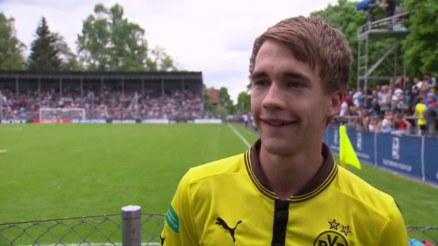Holz in BVB strip (srf.ch)