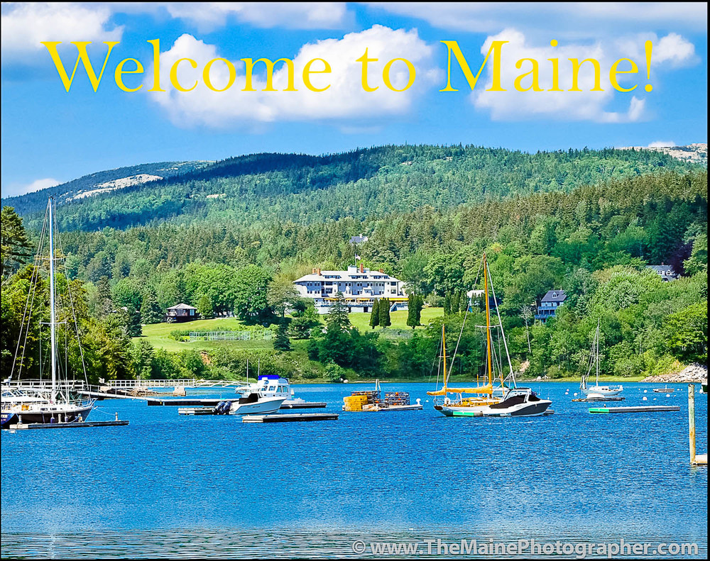 Welcome to Maine and all it has to offer. There's MUCH more then you think!