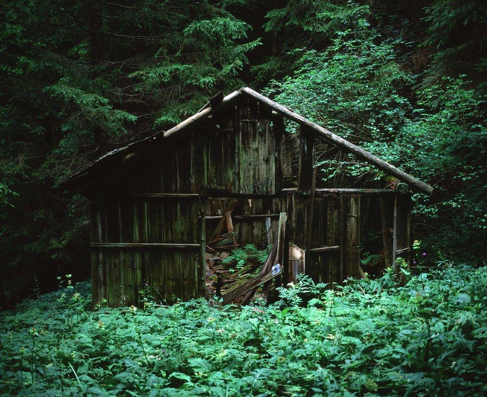 abandoned hutweb.jpg