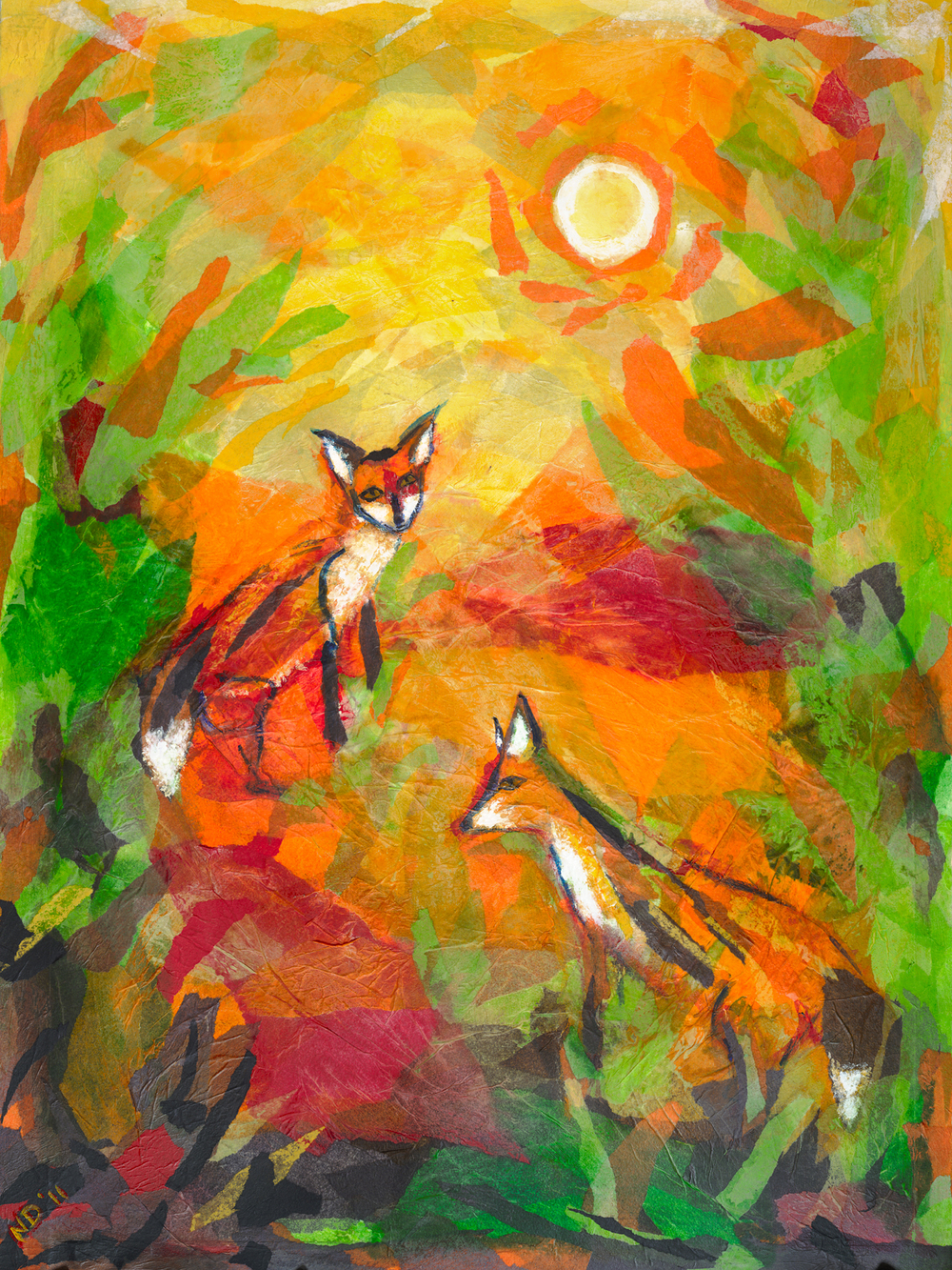 forest foxes