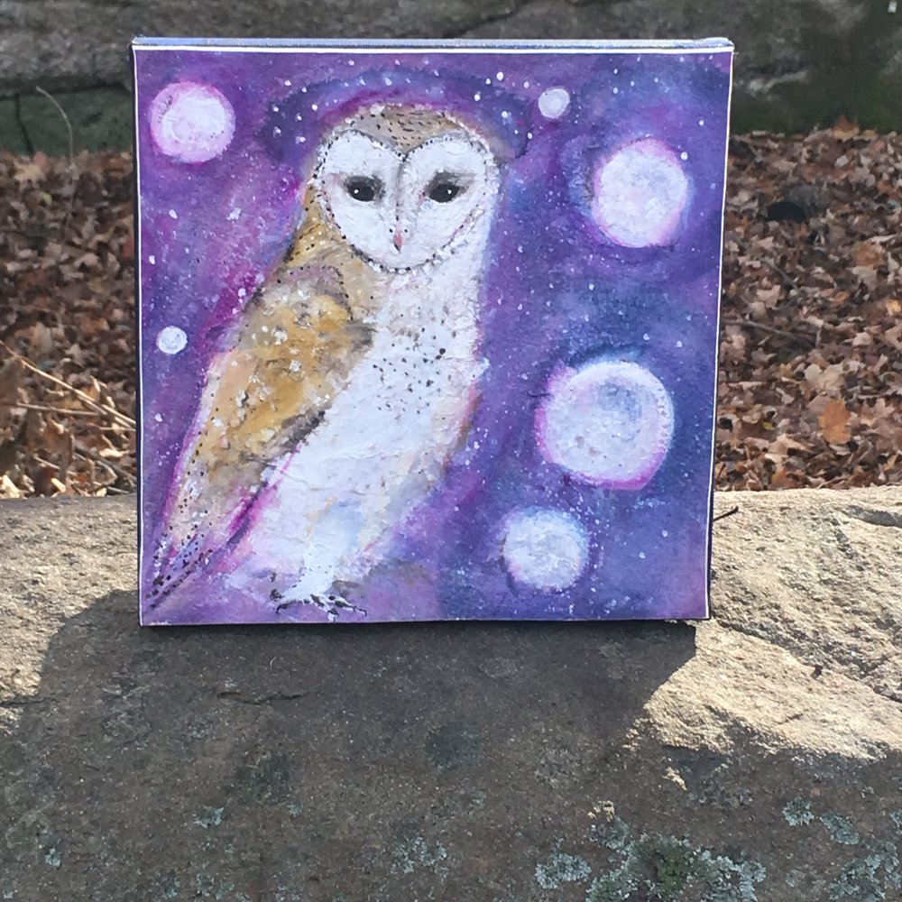 cosmic barn owl