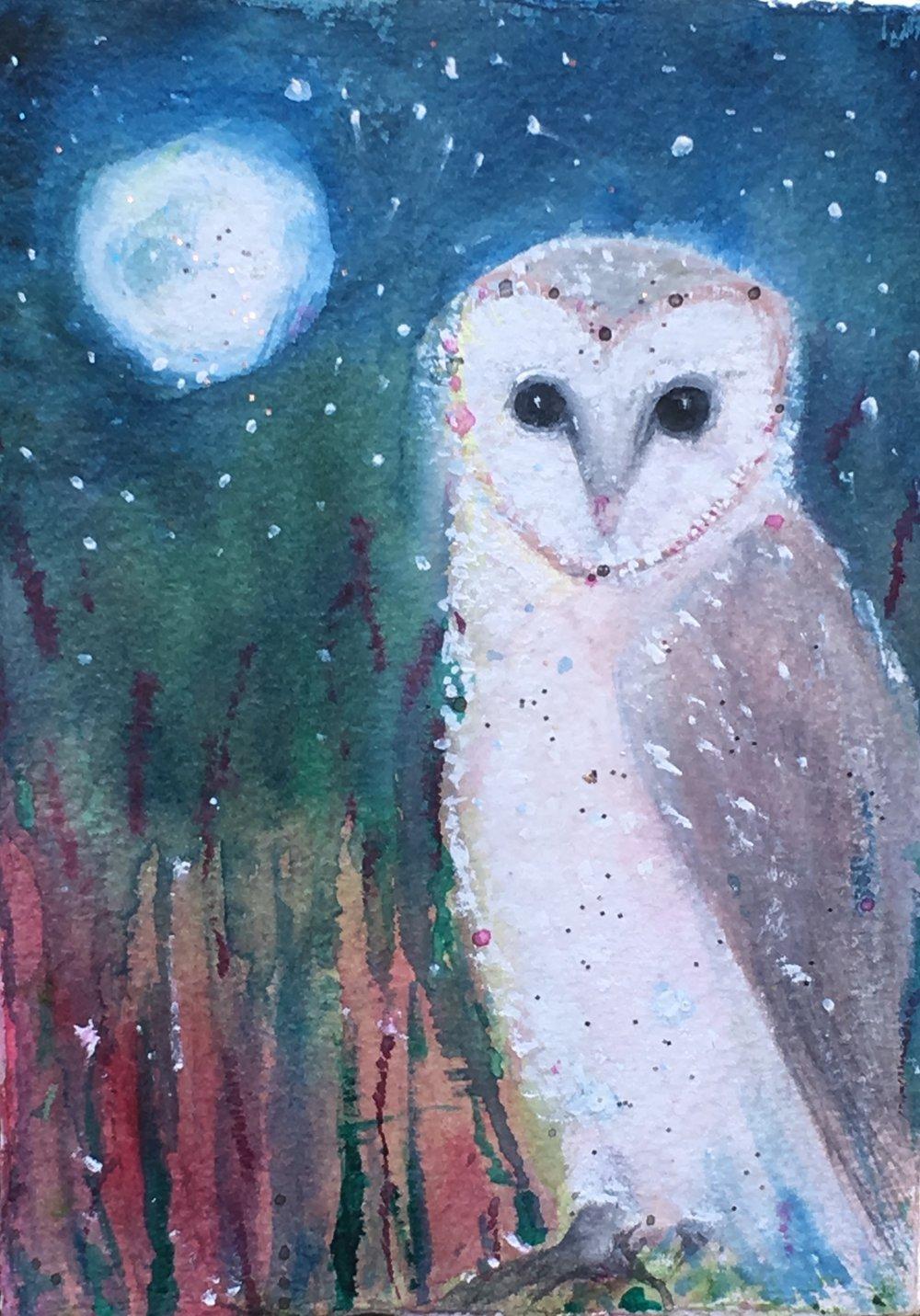 barn owl full moon