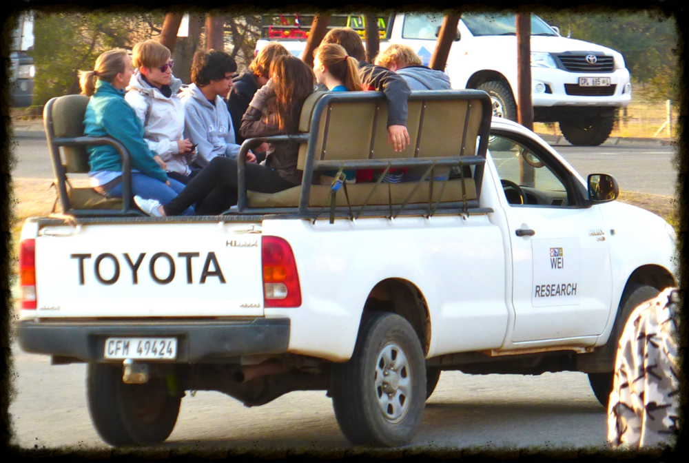 In the open pick-ups heading to our destination of the Balule Reserve.    photo courtesy of Chanthea de Jonge