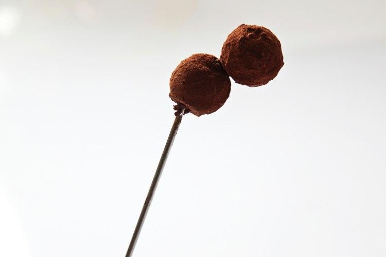 chocolate-750-500 horizontal .004.jpg