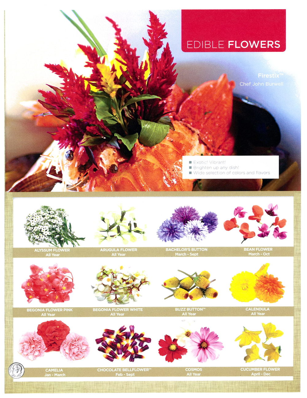 edible flowers page 1