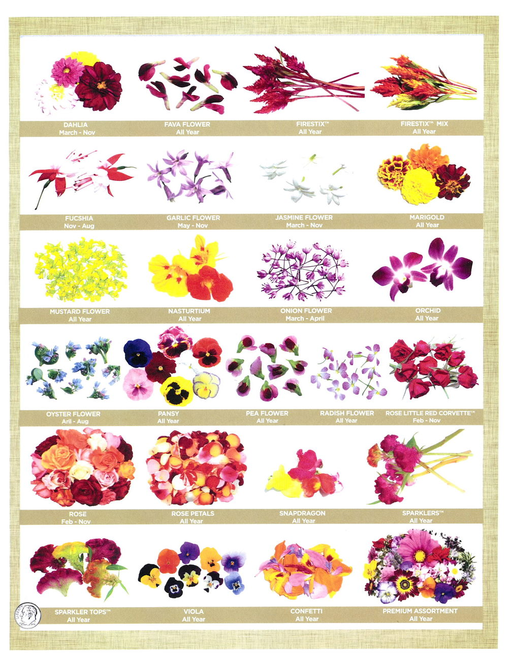 edible flowers page 2