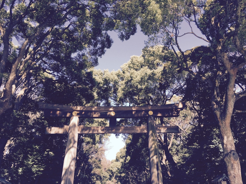Meiji Shrine, where we wrote wishes and prayers on wooden wishing plaques. Here's to all the many things to come.