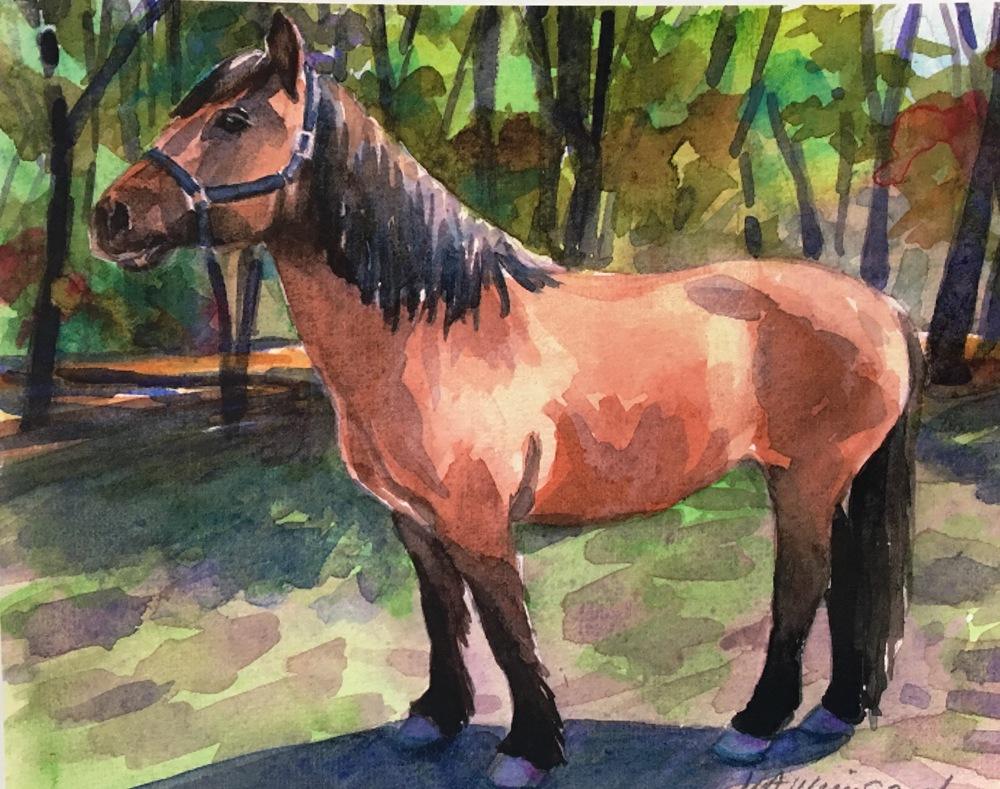 horse portrait 2.jpg