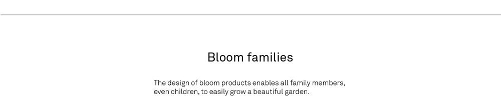 Bloom copy-14.jpg