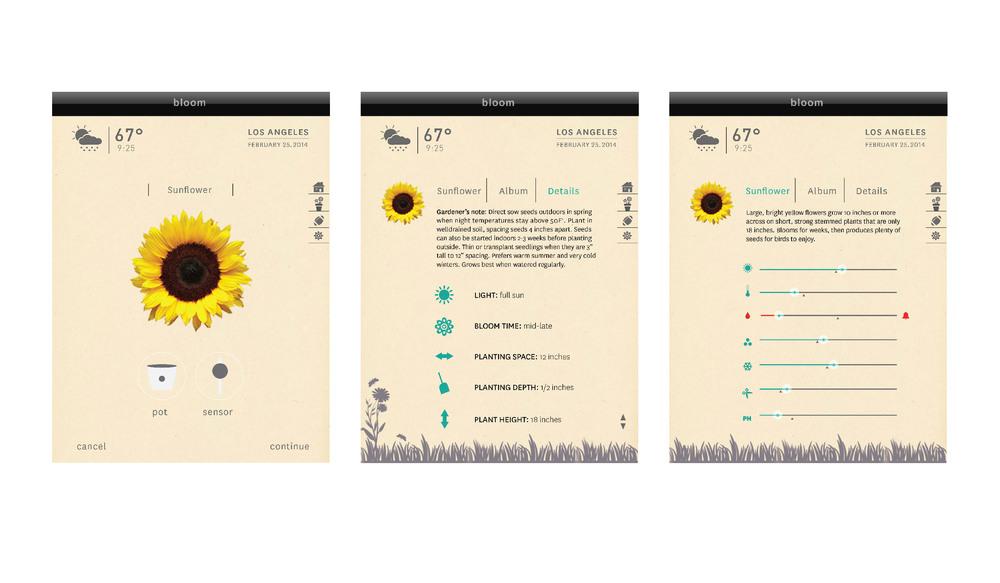 screen design-04.jpg