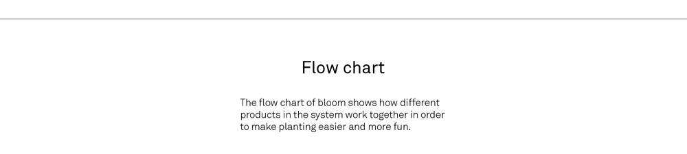 Bloom copy-37.jpg
