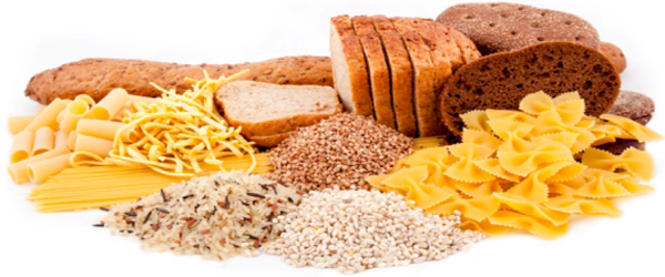 Carbs vs. fat. Florida Aesthetics and Medical Weight Loss in Brandon, FL