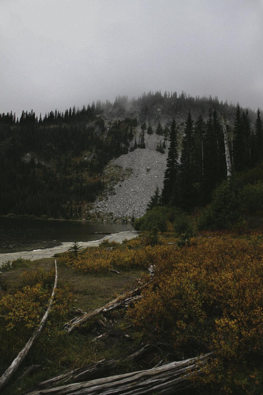 Mount Rainier National Forest, 2016