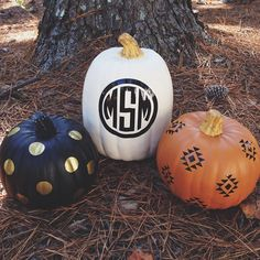 Simplistic & Chic Painted Pumpkins - Parties by Lt