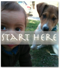 start-here-new.png