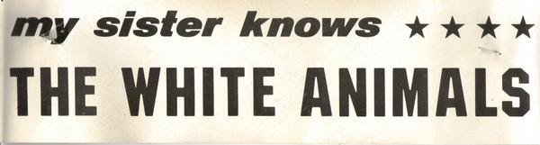 White Animals Bumper Sticker, 1978
