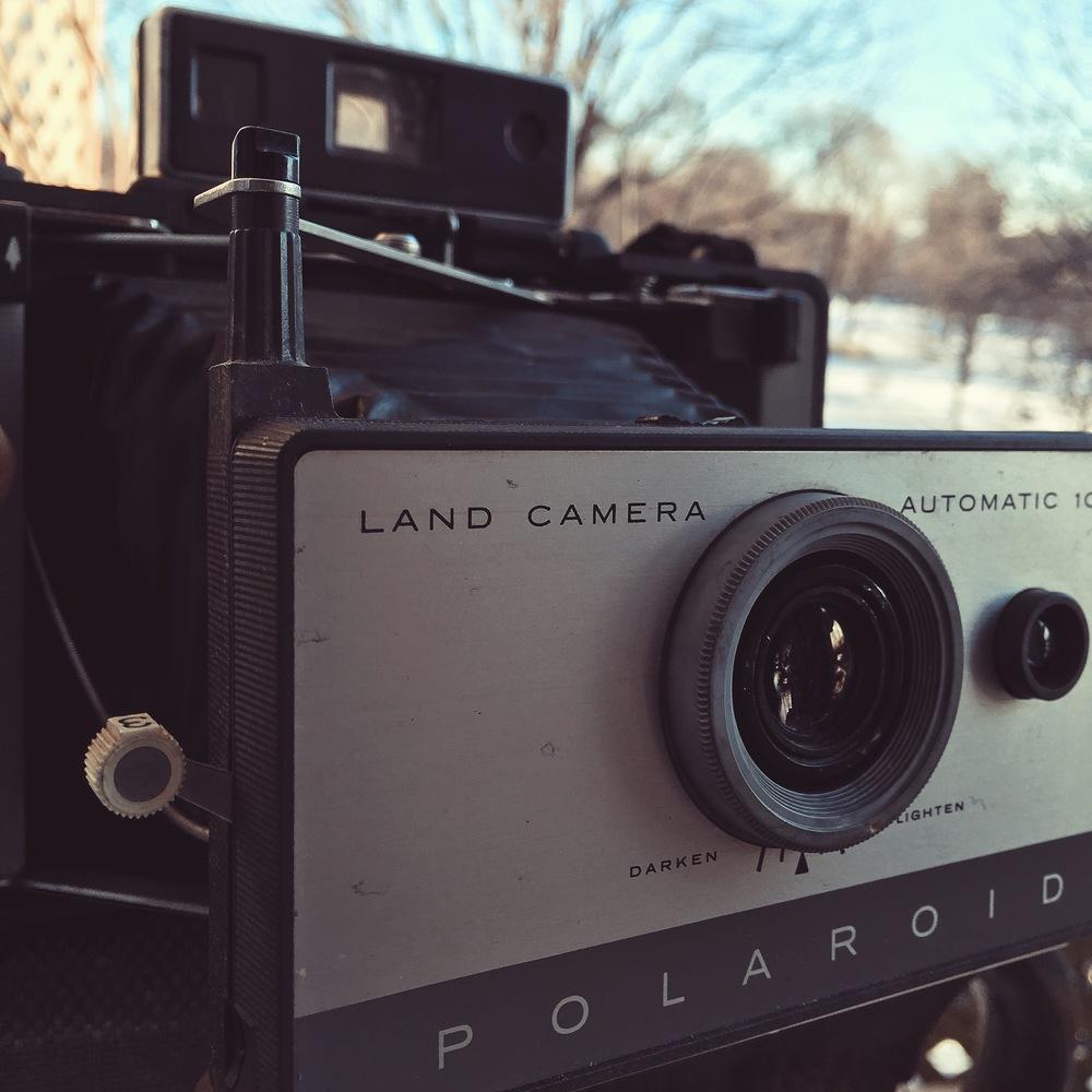 polaroid103_Emilie_Tournevache