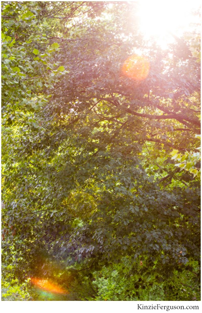 savannah GA portrait photographers beautiful nature sun flare_0104