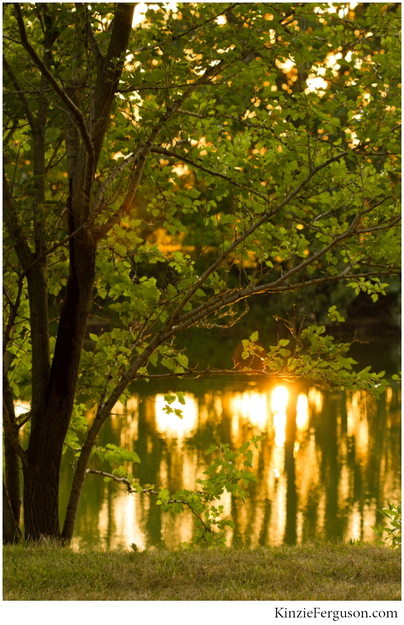 jess+jason_outdoor wedding golden hour pond tolono_il_0107