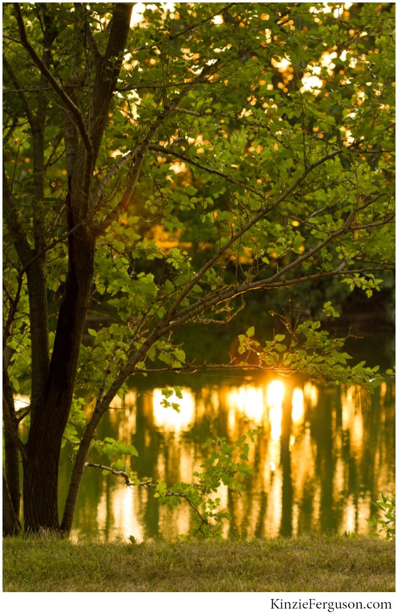 jess+jason_outdoor wedding golden hour pond tolono_il_0107