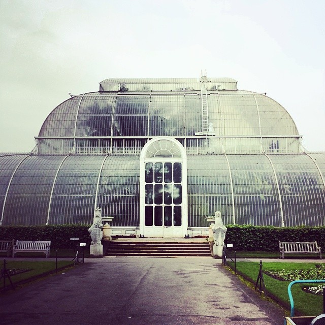 We are at Kew Gardens today interviewing Carlos Magdelena. A specialist in saving plants from the brink of extinction. #kewgardens #lifeofplants